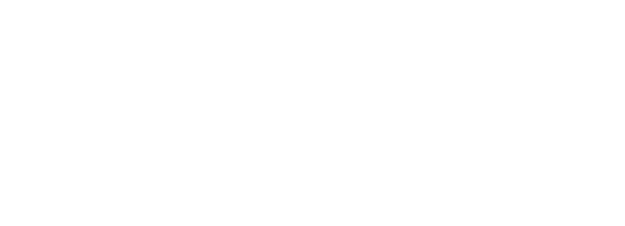speedyspizza